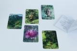 Griebert/Muri: Rauhnächte-Orakelkarten