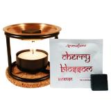 Aromafume Exotic Incense Bricks Diffuser