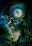 Moondance / Mondtanz